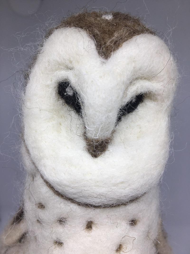 Detail owl 5 2020